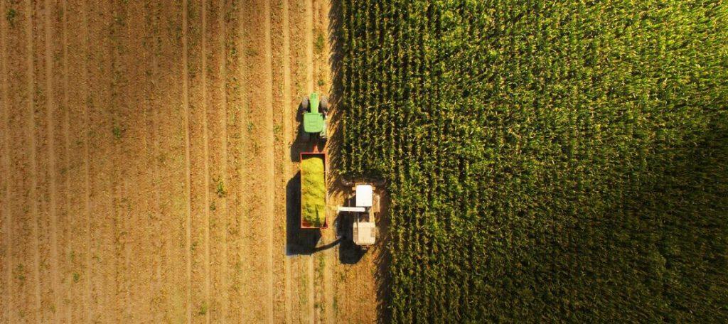 agricolture program